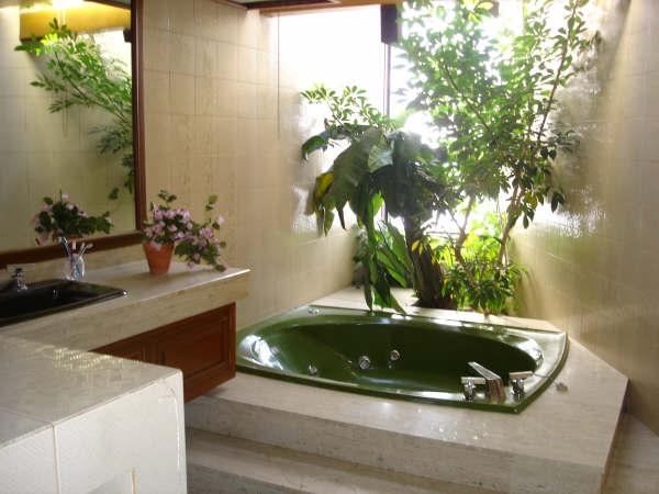 Colocar plantas en el baño