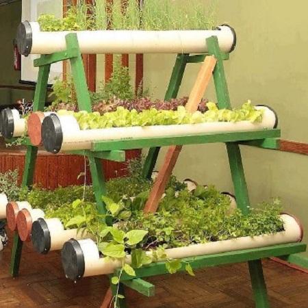 Ideas originales para decorar tu casa con plantas